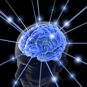 light-brain