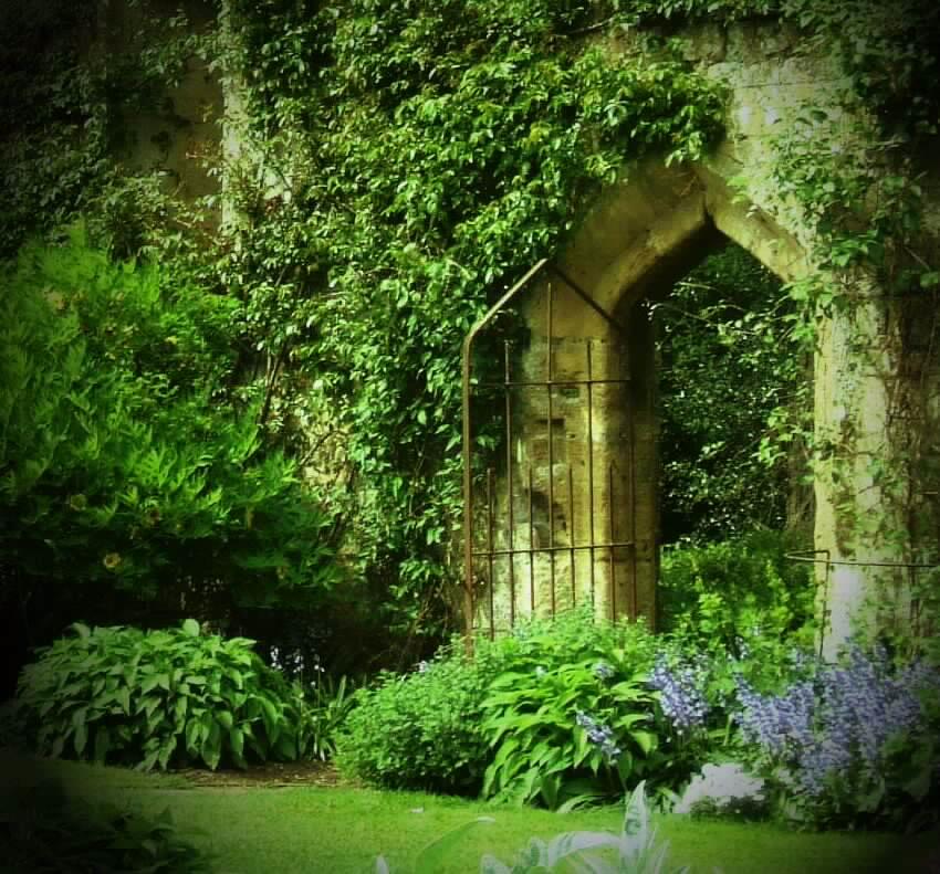 screat garden