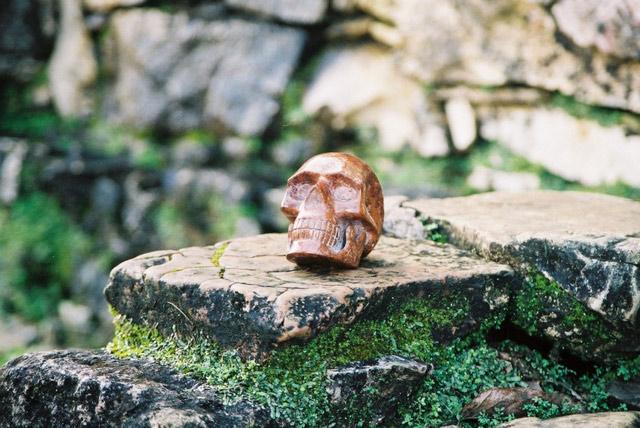 skullpalenq